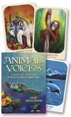 Animal Voices Oracle